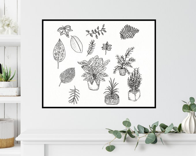 Plant Study Print ++ Plant Print, Plant Sketch, Botanical Artwork, Home Decor, Urban Jungle Print, Plant Lover Print, Plant Illustration