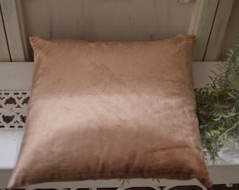 Ivory bronze velvet cushion