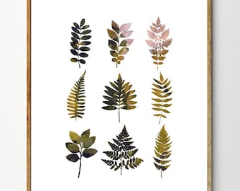 Fern Collection - Fern Art, Botanical Art, Floral Art, Fern Painting, Nature Collection, Home Decor