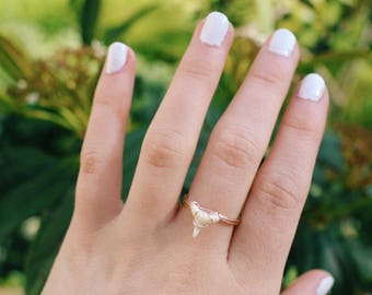 Tiny Natural Shark Tooth Sterling Silver Wire Wrapped Ring