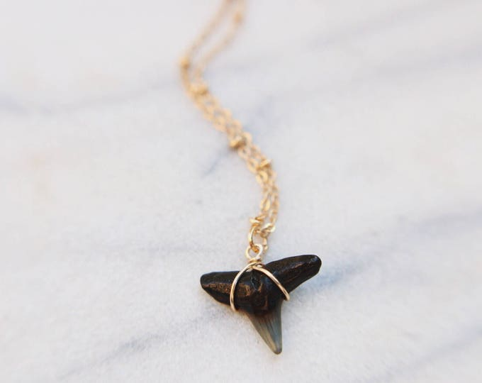 Shark Bite Wire Wrapped Black Shark Tooth Necklace