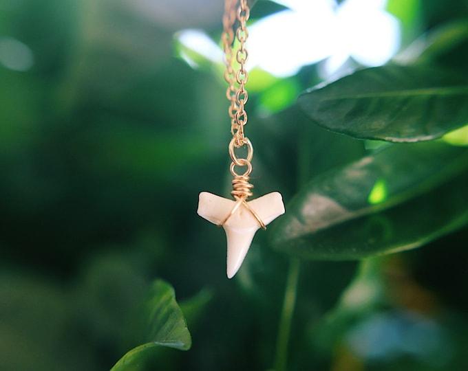 White Shark Bite Necklace