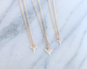 Dainty Rose Gold Wire Wrapped Shark Tooth Necklace / Choker Necklace / Beach Jewelry / Boho Necklace