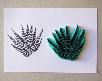 Flowers/ Plants/ Nature