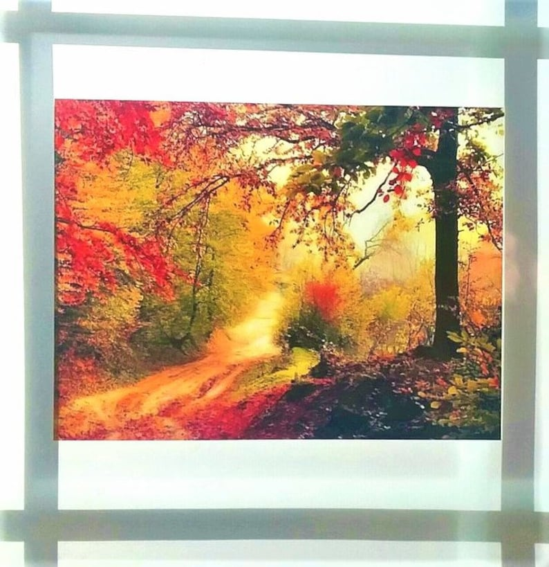 Fall lassen Fenster Cling Glasmalerei Farbe Herbst Bäume ...