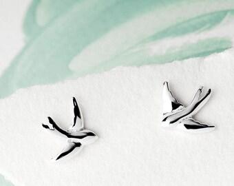 Euro top swallows