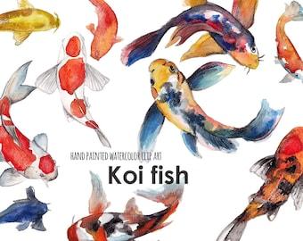 Koi fish clip art, hand painted watercolor clip art  (5242)
