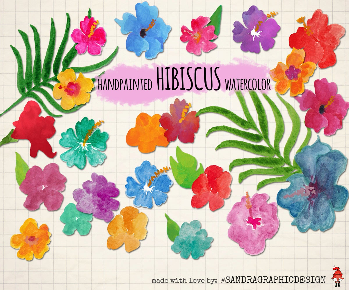 Summer clipart hibiscus flowers hand painted with etsy zoom izmirmasajfo