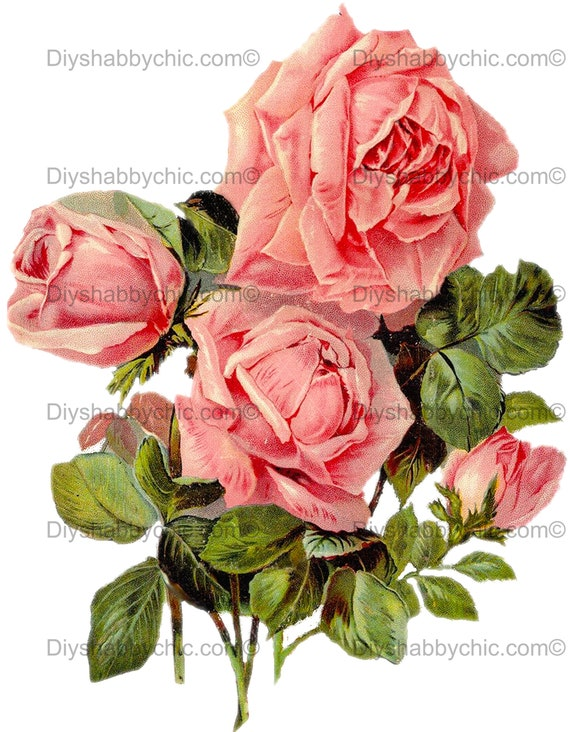Furniture Home Decal Image Transfer Vintage Pink Roses Labels Shabby Chic Flower