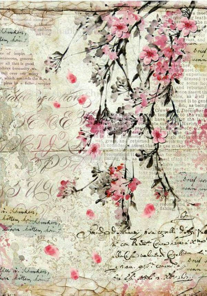 Furniture decals shabby chic french image transfer vintage Antique  cherryblossom home Craft label script crafts scrapbooking card making Diy