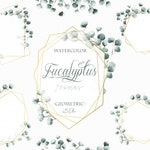 Watercolor Eucalyptus Geometric Clipart Frame Greenery Frames Clip Art Eucalyptus Greenery Silver Dollar Frames Illustration Invitation