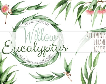 Eucalyptus Greenery Clipart Willow Seeded Clip Art Vector Watercolor Gum Nuts Leaves Wedding Illustration