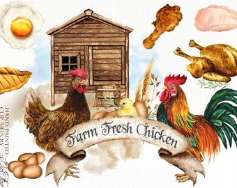 Watercolor Farm Chicken Clipart Eggs Meat Products Chicken Coop Rooster Clip Art Country Rustic Watercolor Illustration Design Farmhouse