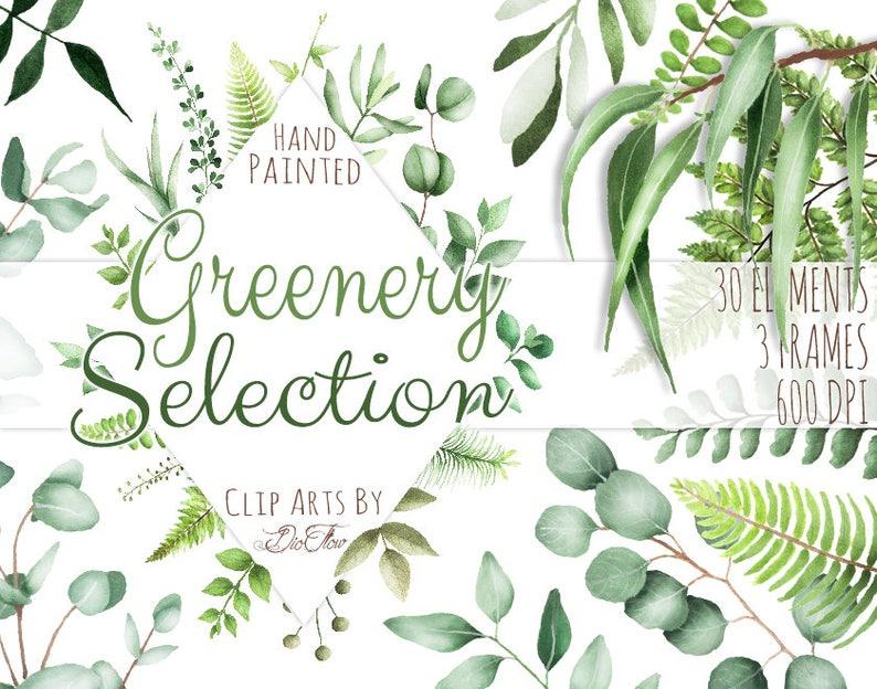 3367297161e9 Watercolor Greenery Clipart Leaf Clipart Eucalyptus Woodland