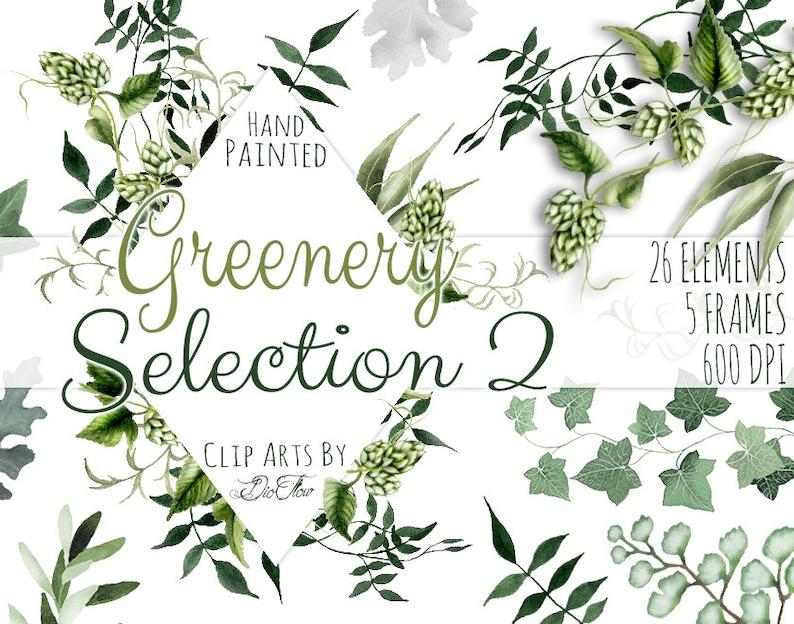 1d10656e24e7 Greenery Clipart Leaves Leaf Vines Fern Watercolor Clip Art