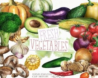 Watercolor Vegetables Clipart Vegetable Clip Art Tomato Avocado Pepper Illustration Decor Kitchen Wall Art Home Decoration Onion Broccoli
