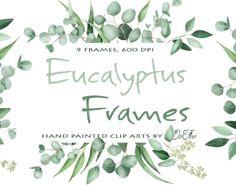 497138921c47 Watercolor Eucalyptus Clipart Frame Greenery Frames Clip Art