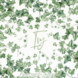 Greenery Ivy Clipart Watercolor Clip Art Vines Leaf Woodland Leaves Foliage Handpainted Green Forest Wedding Invitation Illustration Ivy