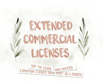 Extended commercial licenses for one set