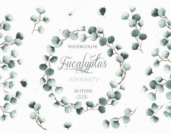 Watercolor Eucalyptus Silver Dollar Clipart Frame Greenery | Etsy