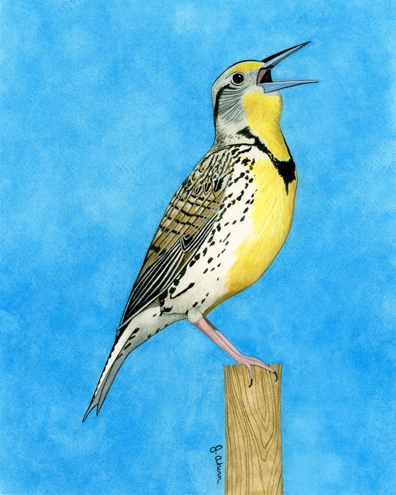Original Watercolor Bird Painting Of Western Meadowlark Bird Watercolor Yellow Bird Bird Home Decor State Bird Art Bird Lover Artwork