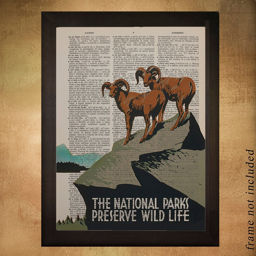 Vintage travel poster - Dictionary Art Print - National Parks - Wildlife -  US USA Wall Art Decor da1224