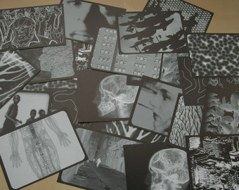 Itineraries (prints)