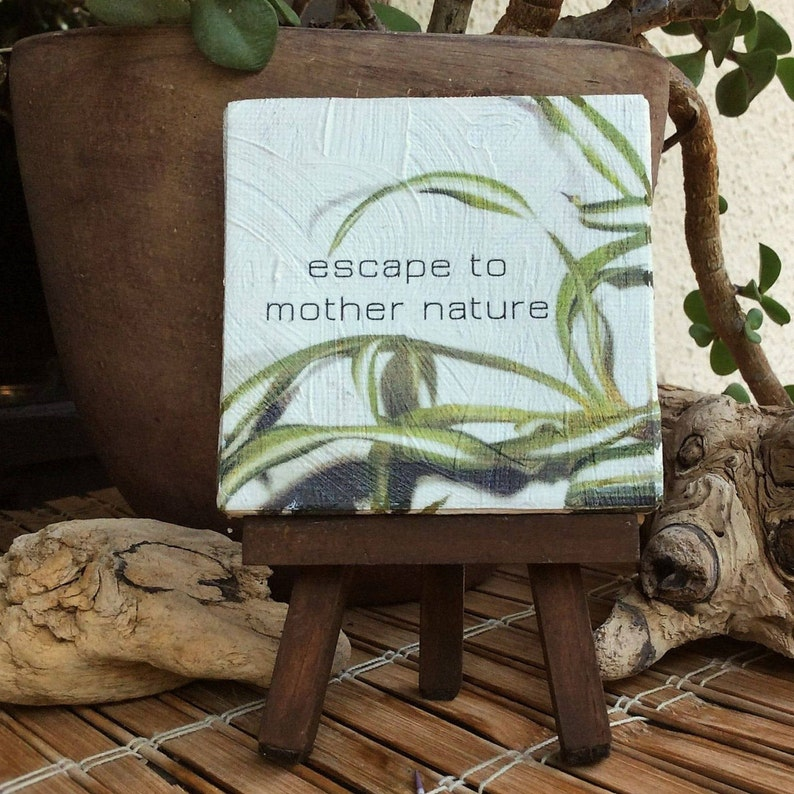 Inspirational quote  small canvas art  gardening quotes  image 0
