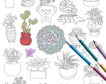 Succulents coloring page INSTANT DOWNLOAD plants Adult Coloring page coloring book botanical floral flower art for coloring therapy cactus