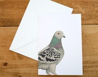 Illustrated Pigeon Card