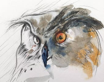 Owl Portrait 3 - Original Watercolor Painting