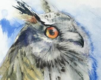 Owl Portrait - Original Watercolor Painting