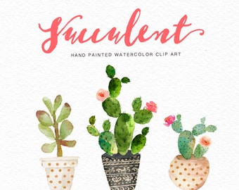 Watercolor succulent clip art collection /Digital clipart watercolor/wedding/ hand painted/Individual PNG files