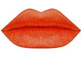 Metallic Liquid Lipstick Nr17 ~Intense Orange~ {Lush Metallics} [NEW]