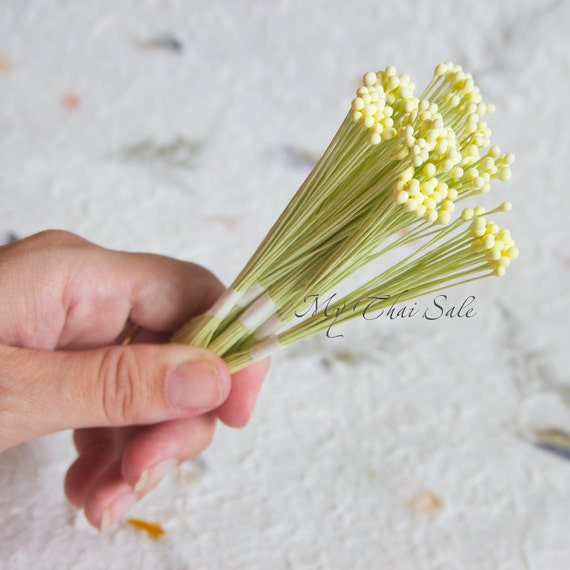 100 double headed Flower wired stamens Wedding cake white green red pink UK VAT