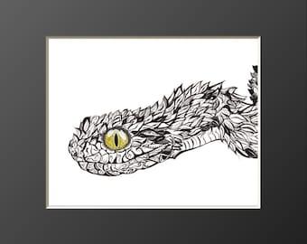 Enchantrix : Serpent Spirit with Mesmerizing Charms