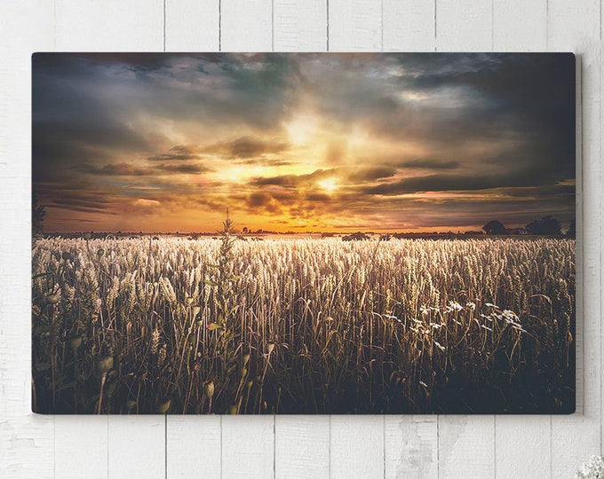 Featured listing image: Corn Field Canvas Art, landscape living room canvas, colorful bedroom wall decor, ready to hang modern office canvas art, photo canvas print