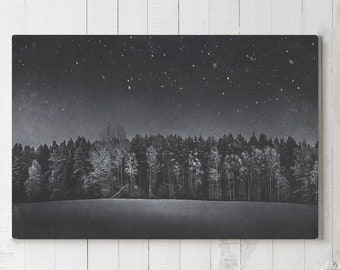 Dark And Moody Forest Canvas Art, black and white wall decor, modern nature canvas art, large ready to hang art, emotional canvas print