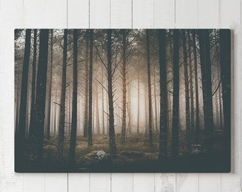 Dark And Magical Forest Canvas Art, evergreen woods wall art, large ready to hang canvas, woods wall art and wall decor, nature living room