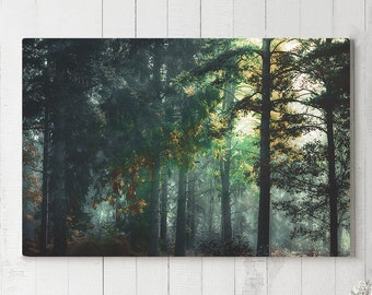 Trees Canvas Art, forest wall decor, wanderlust canvas art, ready to hang art, forest sunshine canvas print