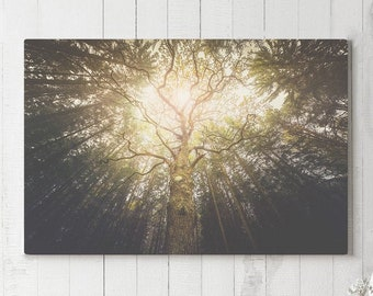 Magical Tree Canvas Art, forest and nature wall art and wall decor, ready to hang large canvas, modern home and office wall art