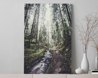 Trail In The Woods Canvas Art, moody forest wall art and wanderlust wall hanging, ready to hang living room art, large nature canvas print