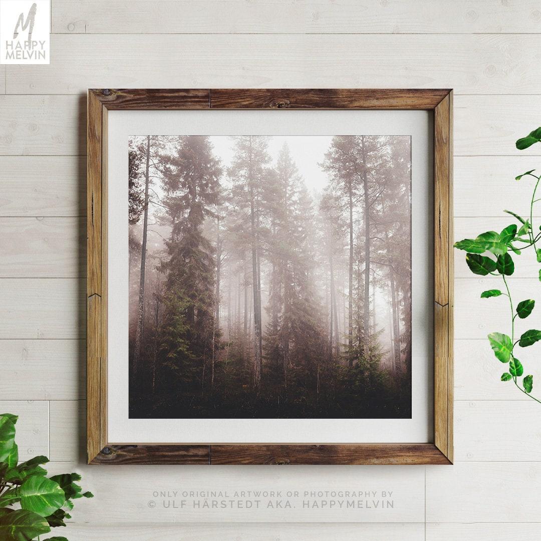 Foggy Trees Print Misty Woods Wall Art And Wall Decor