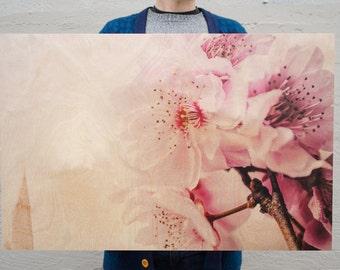 Pink Cherry Blossom Birch Wood Print