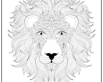 Huge Coloring Poster-Lion