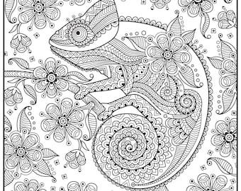 Huge Coloring Poster-Chameleon