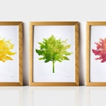 Tree art collection, Tree wall decor Set of 3 wall art Printable decor Set of 3 prints, Trees print set, Nature art prints  Instant Download