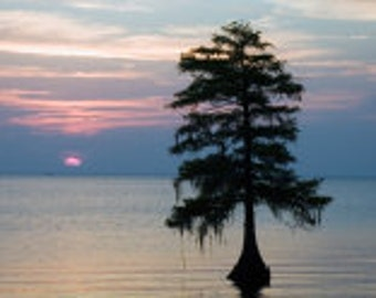Sunset at Lake Moultrie - Fine Art Photographic Print