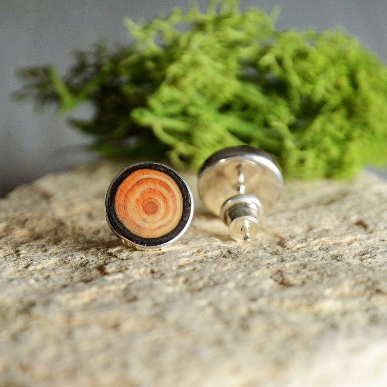 Elegant wood earrings in sterling silver  simple wood studs image 0
