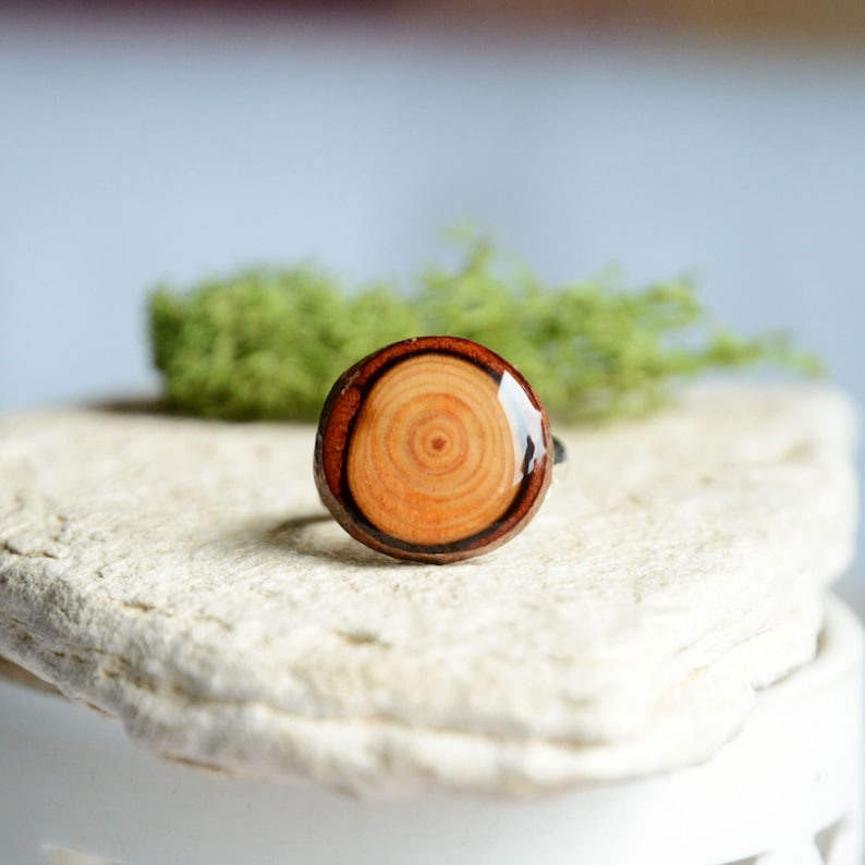 Forest lover ring made from european larch wood and sterling image 0